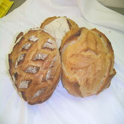 BOULE CAMPAGNE 500 G