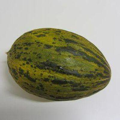 Melon vert - Espagne - cat 1 la pièce -