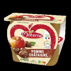 Dessert fruits pomme/châtaigne MATERNE, 4x100g