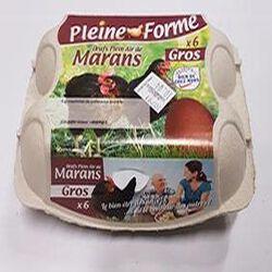 OEUFS PLEIN AIR DE MARANS X6 GROS