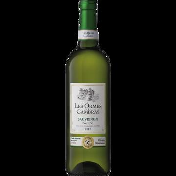 Cambras Vin Blanc Igp Pays D'oc Sauvignon Les Ormes De Cambras, Bouteille De 75cl