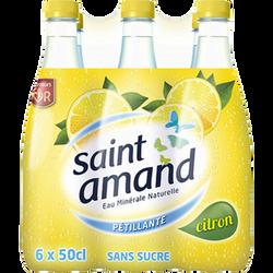 Eau minérale gazeuse aromatisée au citron SAINT AMAND, pack de 6x50cl