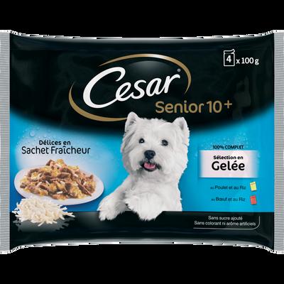 Délices pour chien sénior CESAR, 4 sachet fraicheur 100g