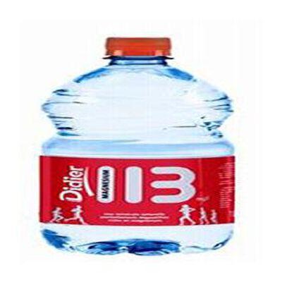 Eau minérale naturelle riche en magnésium DIDIER 113, bouteille de 1l