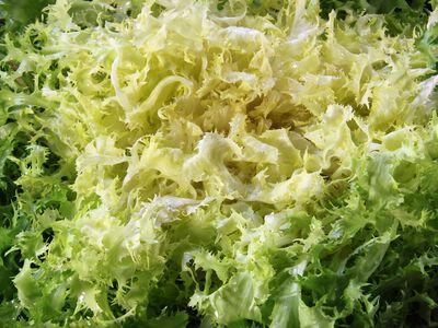 Salade Frisee la piece