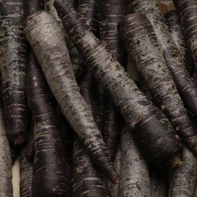 Carotte Violette origine france categorie 1