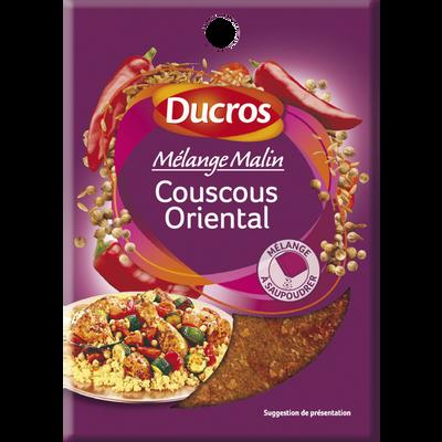 Mélange pour couscous royal, DUCROS, sachet de 20g