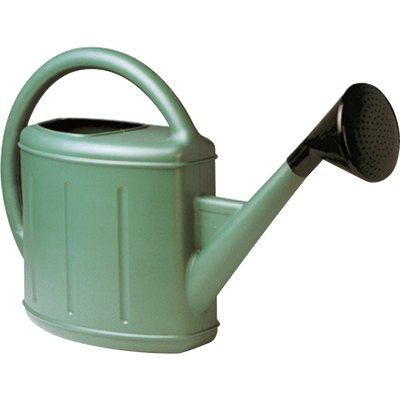 Arrosoir avec pomme, vert métal, 11 litres