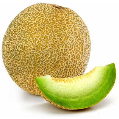 Melon Galia, BIO, calibre 700/1000, Espagne, la pièce