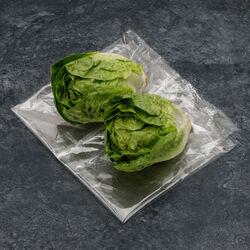Salade sucrine, BIO, catégorie 2, France, barquette 2 pièces