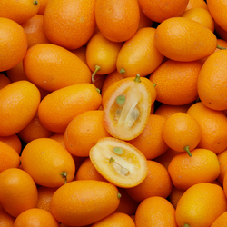 Kumquat, BIO, Italie