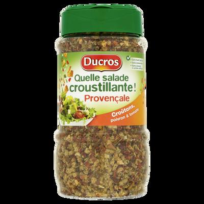 "Epices Provençales ""Quelle Salade"" DUCROS, flacon de 180g"