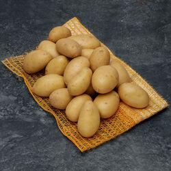 Pomme de terre Allians, De consommation à chair ferme, BIO, Calibre 35/55mm, Cat.2, France, barquette 1,5kg