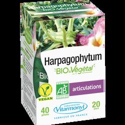 Gamme vegetale - vigne rouge bio et vegetal