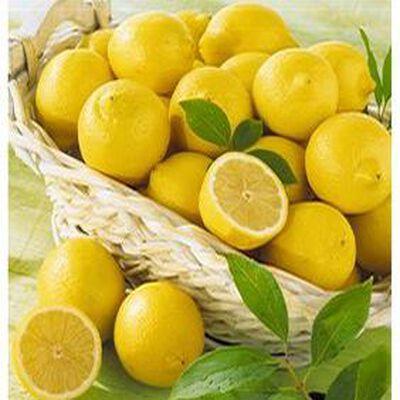 Citron Sachet 500gr