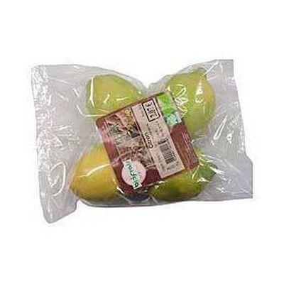 Citrons bio BIOFRAIS, 4 fruits, sachet de 500g