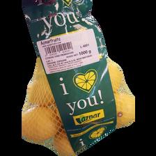 Citron jaune primofiori, calibre 4/5, catégorie 1, Espagne, filet 1kg