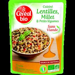 Doy lentilles, millet et petits légumes CEREAL BIO, 250g