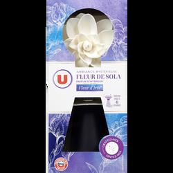 Désodorisant parfum fleur de sola et fleur d'iris ambiance mystérieuseU, aérosol de 75ml
