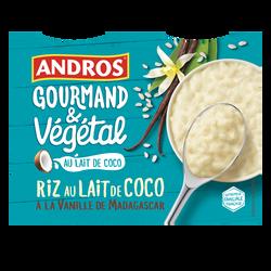 Riz au lait de coco vanille végétal ANDROS, 4x100g