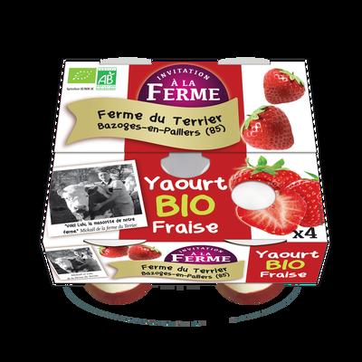 Yaourt fraise bio le terrier x 4