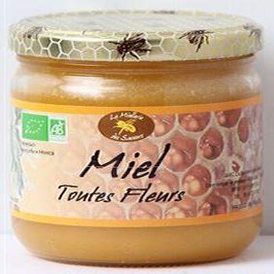 Miel toutes fleurs Bio, 500g
