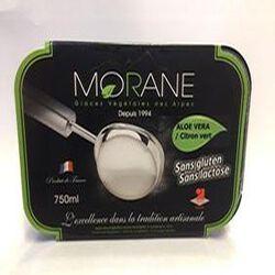 Glace à l'ALOE VERA / Citron vert MORANE (Glaces Végétales des Alpes)