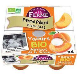 Yaourt BIO au lait frais de vache, abricot de la drôme, FERME D'ANA-SOIZ, 4 pots de 125g