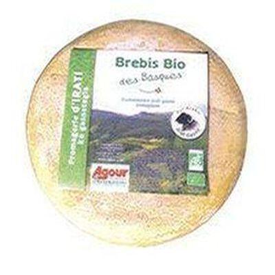 "Brebis Agour ""Bio des Basques"""