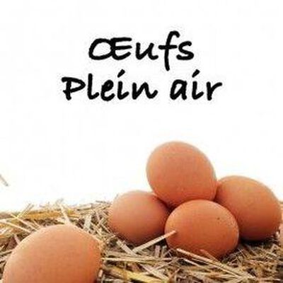 Oeuf Plein Air Maxi Coque Calibre Très Gros x10