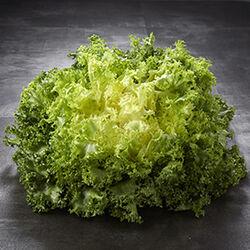 Salade frisée, catégorie 1, France, la pièce