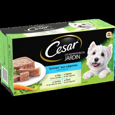 CESAR inspiration du jardin terrines aux légumes pour chien, 4 barquettes de 300g