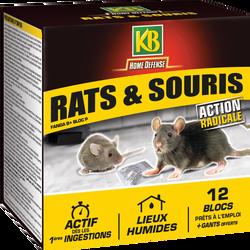 Rat souris étui de 12 blocs prets à l'emploi 240g+gants