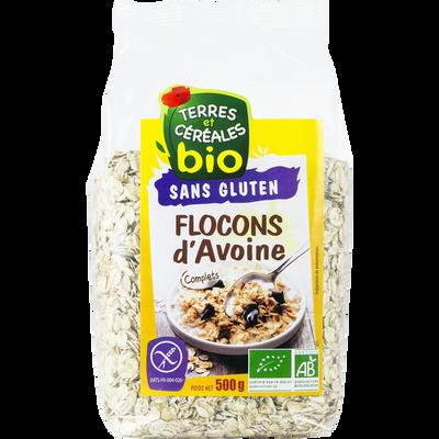 Flocons d'avoine bio sans gluten TERRE ET CEREALES, sachet de 500g