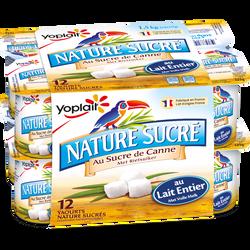 Yaourt au lait entier nature sucré YOPLAIT, 12x125g