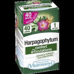 Harpagophytum, 40 gellules