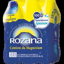 Eau minérale naturelle gazeuse ROZANA, 6x1l