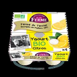Yaourt citron bio le terrier x 4