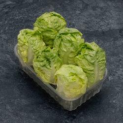 Salade Coeur de Sucrine, catégorie 1, Espagne, barquette 6 pièces