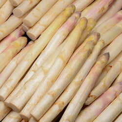Asperge BLANCHE ORIGINE HOLLANDE CATEGORIE 1