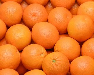 Orange navelate, calibre 3, catégorie 1, Espagne à la pièce