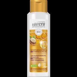 Shampoing et après shampoing soin en profondeur 2 en 1 à l'huile d'amande bio et à l'huile de noix de macadamia bio pour cheveux très secs et abîmés LAVERA, flacon de 250 ml