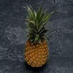 Ananas Victoria, la pièce origine Ile maurice cat 1