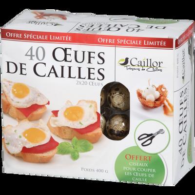 Oeuf de caille, CAILLOR, 40 pièces + Ciseaux offerts, 400g