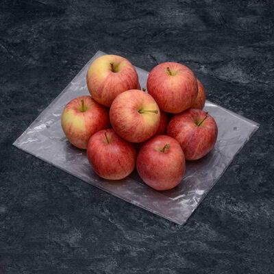 Pomme Elstar, calibre 115/150, catégorie 1, Pays bas, sachet 1,5kg