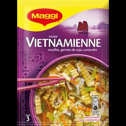 Soupe Vietnamienne au poulet et soja déshydratée MAGGI, sachet de 40g,75cl