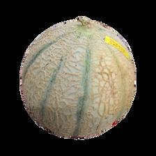 Melon charentais jaune, SOLDIVE, calibre 1,15/1,35kg, Sénégal