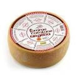 TOMME CATALANE AOP LP 27%MG.
