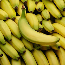 Costa Banane Cavendish P20, Catégorie 1,  Rica 500 G