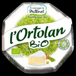 Fromage bio au lait pasteurisé 28% de matière grasse L'ORTOLAN FROMAGERIE MILLERET, 250g